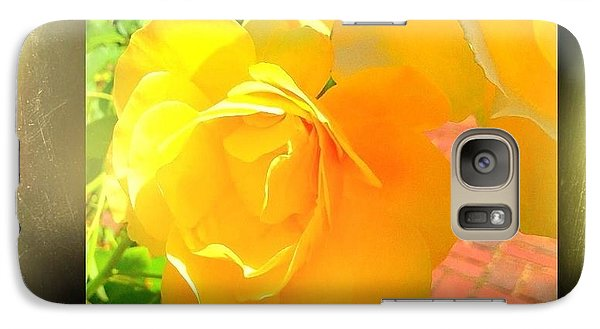 Galaxy Case featuring the photograph The Blushing Yellow Rose by Becky Lupe