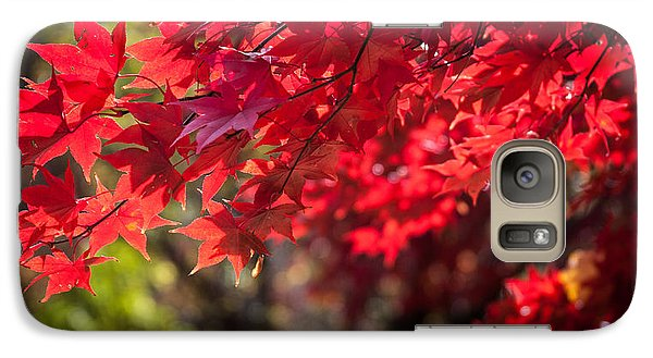 Galaxy Case featuring the photograph The Color Of Fall by Patrice Zinck