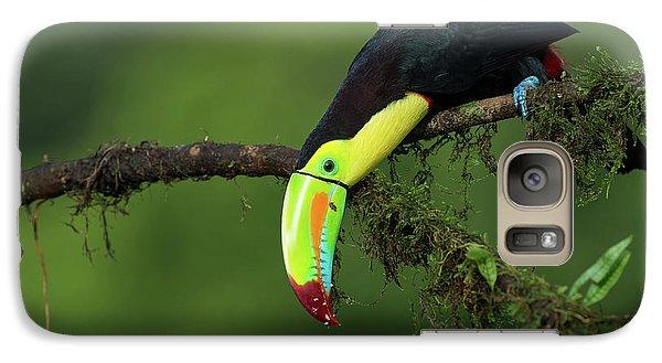 Toucan Galaxy S7 Case - The Colors Of Costa Rica by Fabio Ferretto
