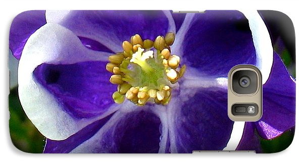Galaxy Case featuring the photograph The Columbine Flower by Patti Whitten