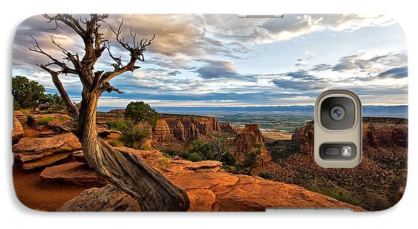 Galaxy Case featuring the photograph The Crooked Old Tree by Ronda Kimbrow