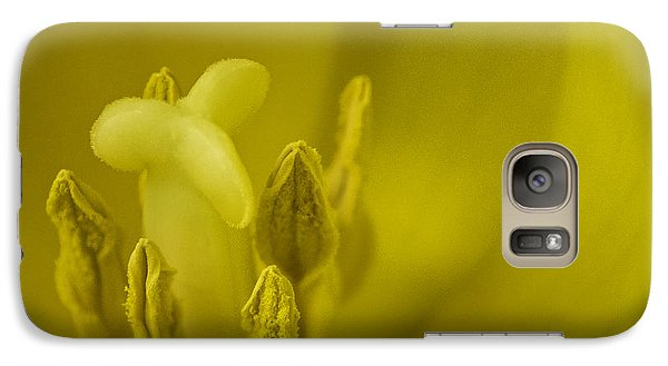 Galaxy Case featuring the photograph The Dance by Lucinda Walter