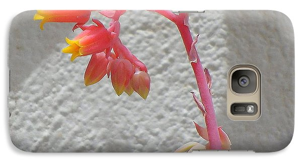 Galaxy Case featuring the photograph The Desert Blooms by Lew Davis