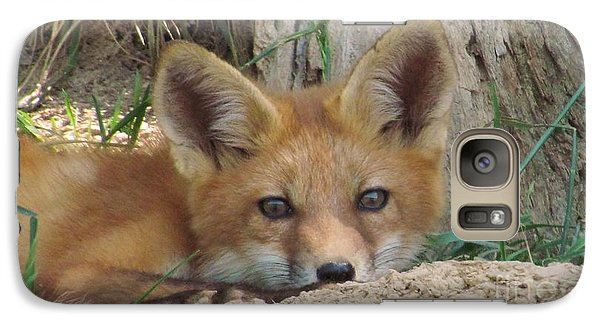 Galaxy Case featuring the photograph The Fox by Laurinda Bowling