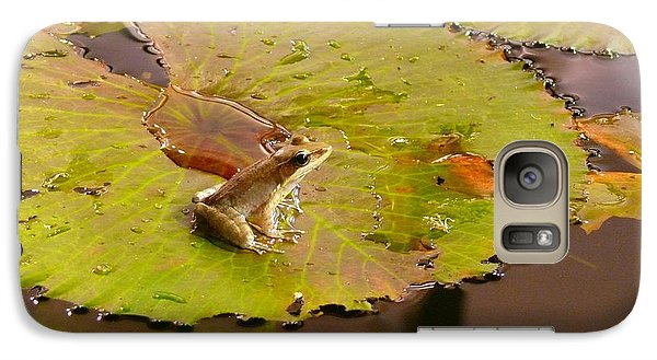 Galaxy Case featuring the photograph The Frog by Evelyn Tambour