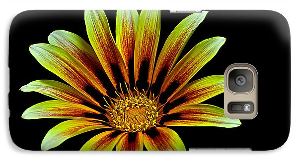 Galaxy Case featuring the photograph The Gazania by Marwan Khoury