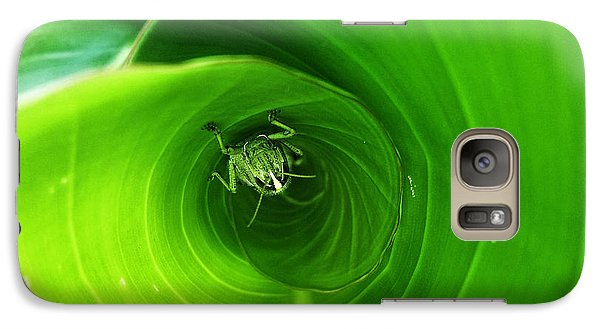 Galaxy Case featuring the pyrography The Grasshopper Flush by Rebecca Davis
