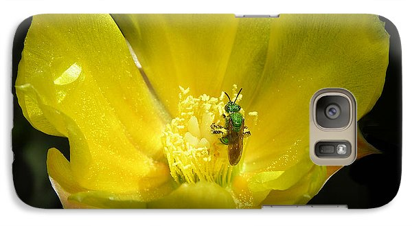 Galaxy Case featuring the photograph The Green Hornet by Mariarosa Rockefeller