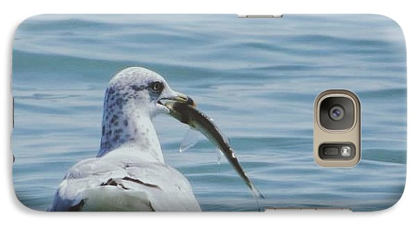Galaxy Case featuring the photograph The Hungry Seagull by Nikki McInnes