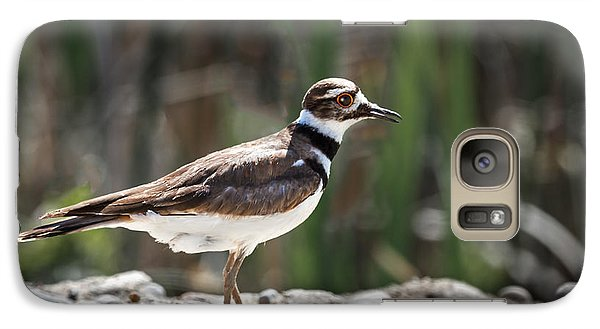 The Killdeer Galaxy S7 Case