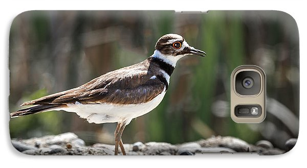 The Killdeer Galaxy S7 Case by Robert Bales