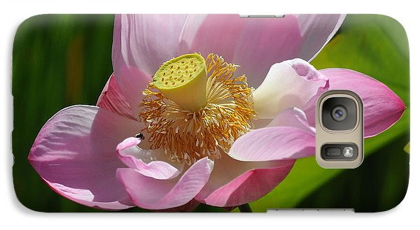 Galaxy Case featuring the photograph The Lotus by Vivian Christopher
