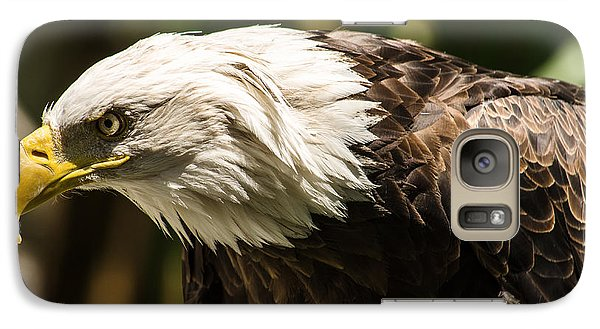 Galaxy Case featuring the photograph The Majestic American Bald Eagle by Yeates Photography