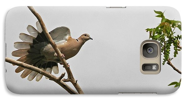 Galaxy Case featuring the photograph The New Dove In Town by Tom Janca