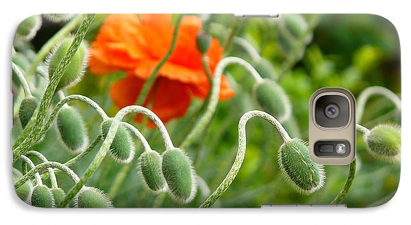 Galaxy Case featuring the photograph The Poppy by Evelyn Tambour