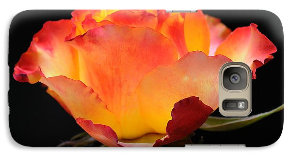 Galaxy Case featuring the photograph The Rose by Vivian Christopher