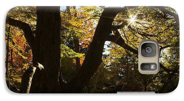 Galaxy Case featuring the photograph The Secret Forest by Jose Oquendo