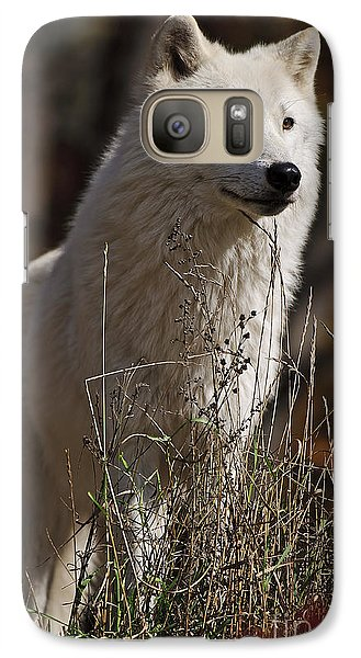 Galaxy Case featuring the photograph The Sentinel by Wolves Only