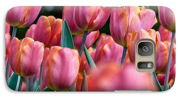 Galaxy Case featuring the photograph The Spring Flowers by Sergey Simanovsky