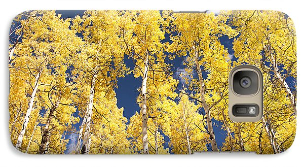 Galaxy Case featuring the photograph The Tall Ones by The Forests Edge Photography - Diane Sandoval