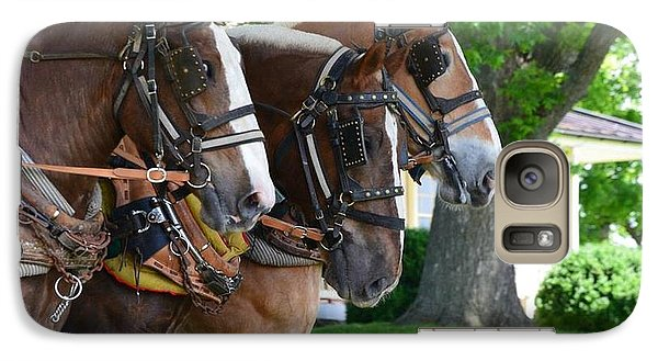 Galaxy Case featuring the photograph The Three Amigos by Cathy Shiflett