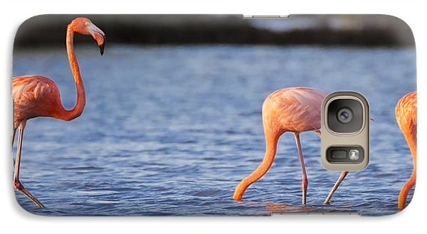 Flamingo Galaxy S7 Case - The Three Flamingos by Adam Romanowicz