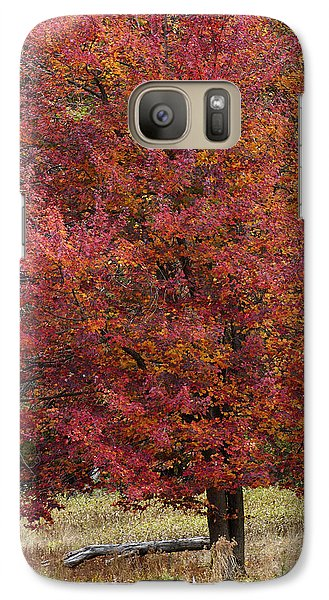 Galaxy Case featuring the photograph The Tree by Timothy McIntyre