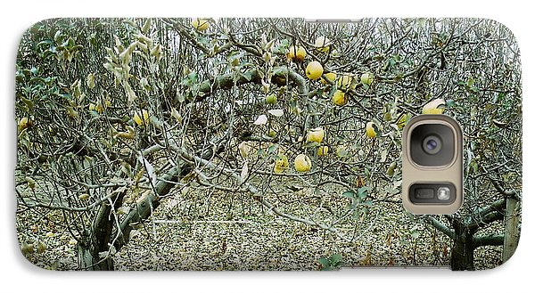 Galaxy Case featuring the photograph The Very Last Apples by Joyce Gebauer