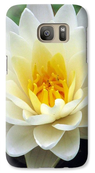 Galaxy Case featuring the photograph The Water Lilies Collection - 03 by Pamela Critchlow