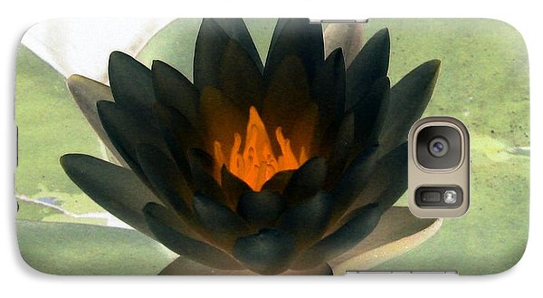 Galaxy Case featuring the photograph The Water Lilies Collection - Photopower 1037 by Pamela Critchlow