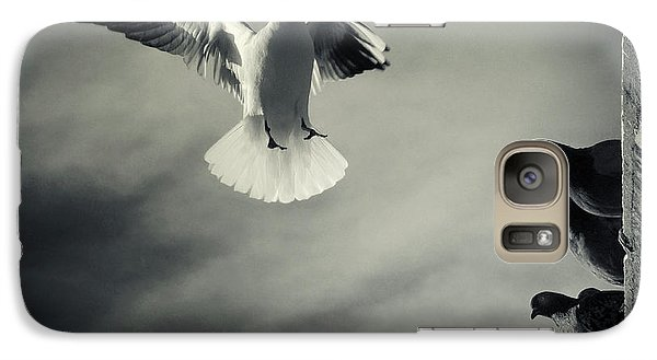 Pigeon Galaxy S7 Case - The White And The Blacks by Marco Bianchetti