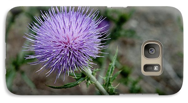 Galaxy Case featuring the photograph Thistle by Rod Wiens