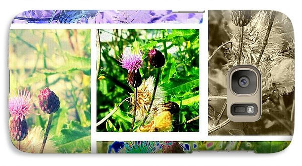 Galaxy Case featuring the photograph Thistle Study by Thomasina Durkay