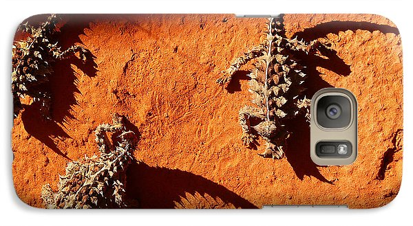 Galaxy Case featuring the photograph Thorny Devils by Evelyn Tambour