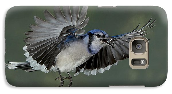 Galaxy Case featuring the photograph Those Seeds Are For My Larder by Gerry Sibell