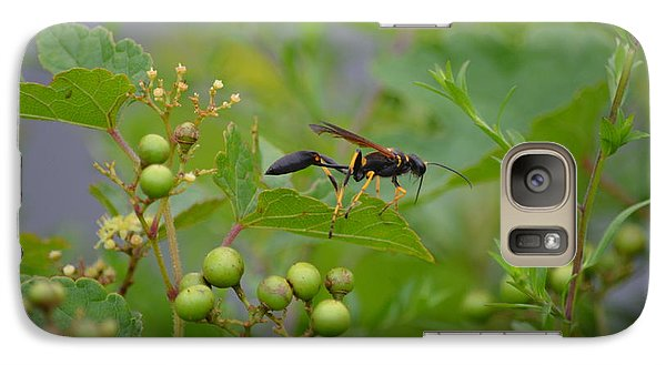 Galaxy Case featuring the photograph Thread-waist Wasp by James Petersen