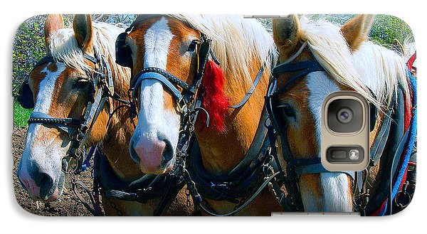 Galaxy Case featuring the photograph Three Horses Break Time  by Tom Jelen