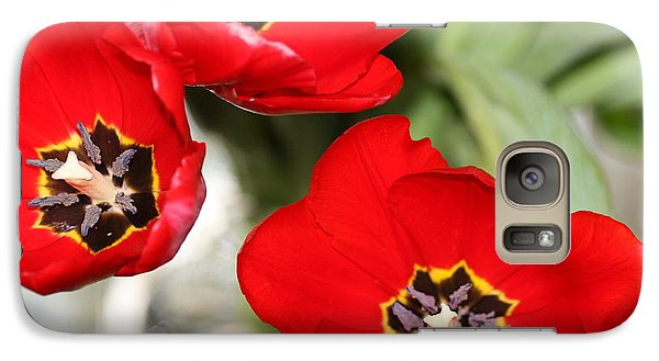 Galaxy Case featuring the photograph Three In Red  by Cathy Dee Janes