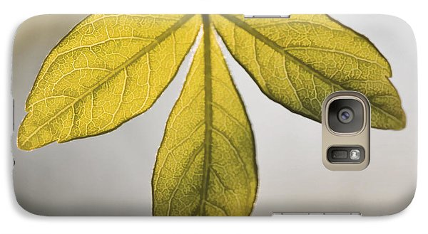 Galaxy Case featuring the photograph Three Leaves by Jaki Miller