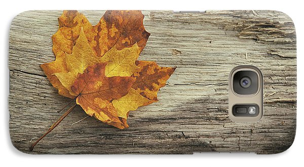 Three Leaves Galaxy Case by Scott Norris