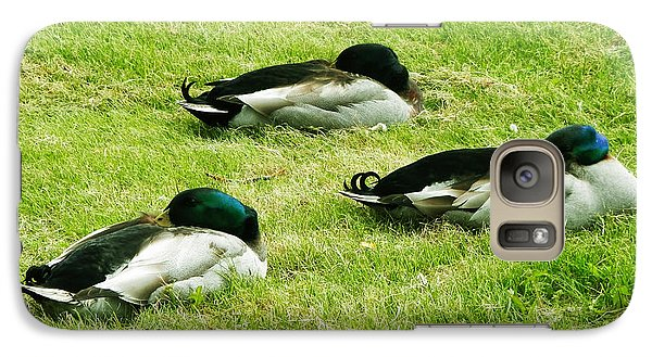 Galaxy Case featuring the photograph Three Napping Ducks  by Zinvolle Art