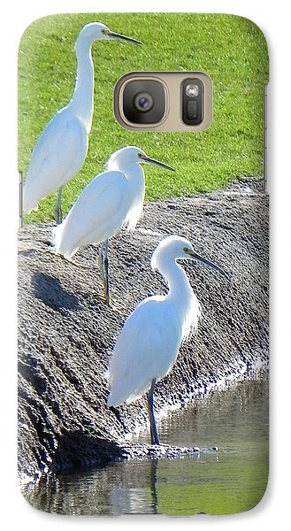 Galaxy Case featuring the photograph Three Stooges by Deb Halloran