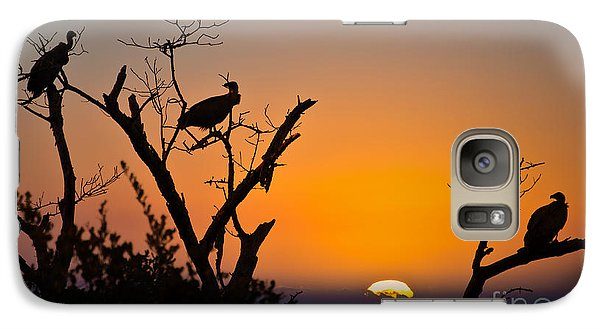 Vulture Galaxy S7 Case - Three Vultures Waiting by Delphimages Photo Creations
