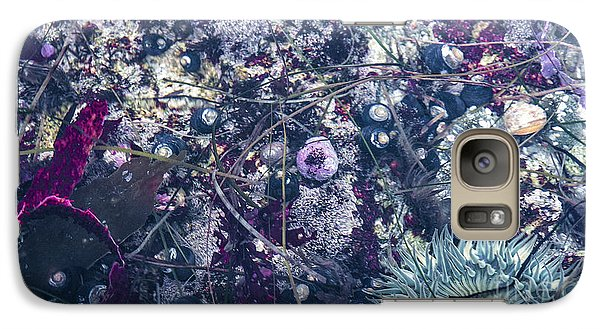 Galaxy Case featuring the mixed media Tidal Pool Assortment by Terry Rowe