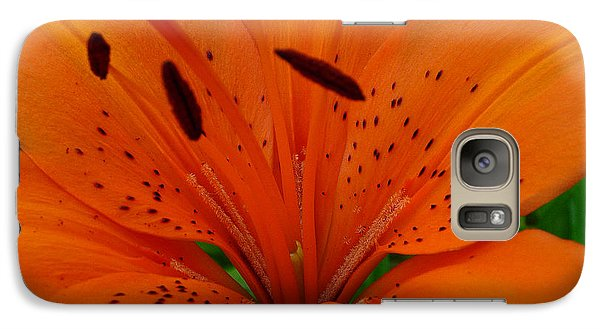 Galaxy Case featuring the photograph Tiger Lily by Bianca Nadeau