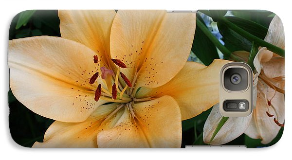 Galaxy Case featuring the photograph Tiger Lily by Dora Sofia Caputo Photographic Art and Design