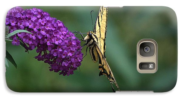 Galaxy Case featuring the photograph Tiger Swallowtail Butterfly by Michael Dohnalek