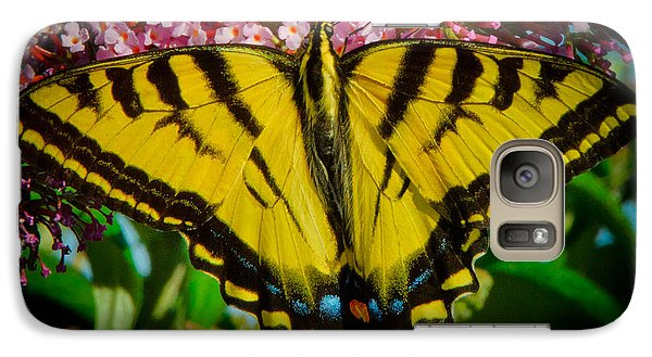 Galaxy Case featuring the photograph Tiger Swallowtail  by Janis Knight