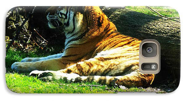 Galaxy Case featuring the photograph Tiger Too by B Wayne Mullins