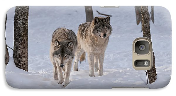 Galaxy Case featuring the photograph Timber Wolf Pair  by Wolves Only